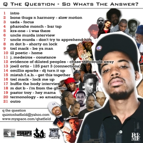 SKE - Q THE QUESTION - WHATS THE ANSWER BACK COVER